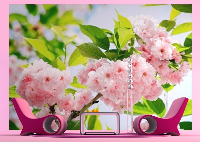 fototapeta_na_sciane_z_rozowymi_kwiatami